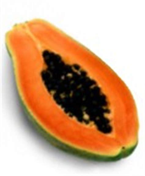 propiedades medicinales de la papaya botanica papaya propiedades curativas