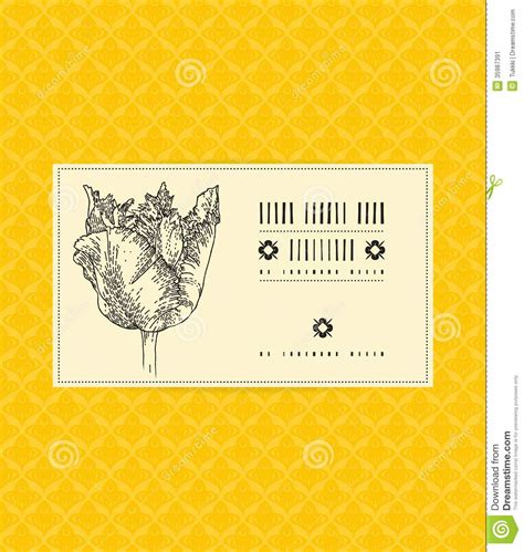 gift card package template vector card with tulip on ornamental pattern stock vector