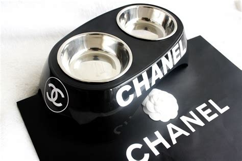 chanel dog bowl cute dog bowls bling dog collars dog bowls