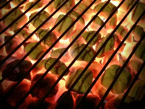 gas or charcoal which type of grill is right for you wired
