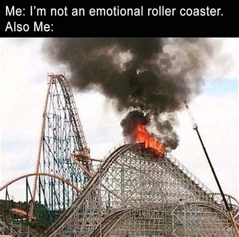 roller coaster mood swings best 25 bipolar humor ideas on pinterest bipolar funny