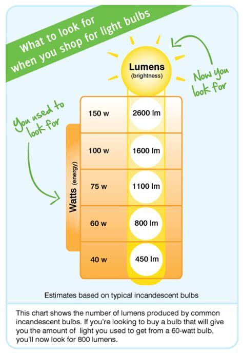 shopping for light bulbs consumer information