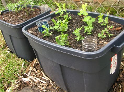 self watering planter self irrigating planters made easy apron stringz