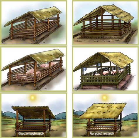pig housing plans pig farming in ghana pig housing pig sty biz plan pinterest