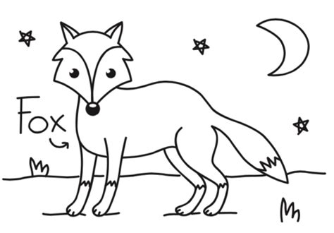 night animals coloring page craft ideas colour the nocturnal animals toucanbox