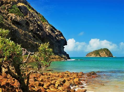 boat tours yeppoon oshen apartments oceanfront bliss on the capricorn coast