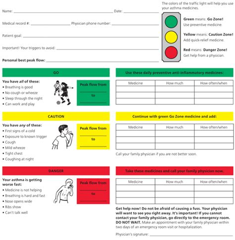asthma care plan template nursing assistant daily flow record images frompo