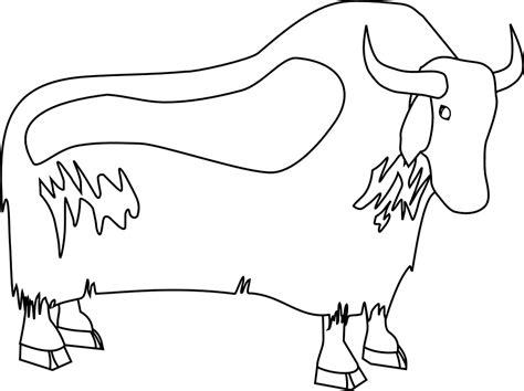 buffalo outline coloring home