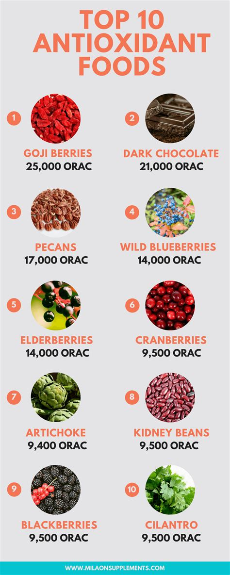 10 Best Antioxidant Foods by Top 10 Antioxidant Rich Foods And Herbs Milaonsupplements