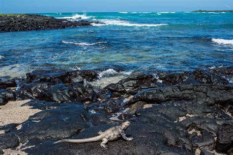 Search Ecuador Islas Galapagos Ecuador Images
