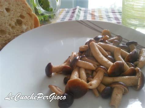 come cucinare i funghi chignon in padella come cucinare i funghi pioppini in padella