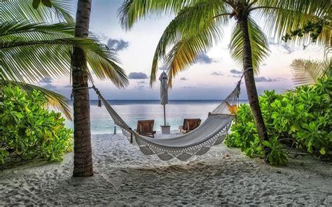 hd hammock   ocean side wallpaper