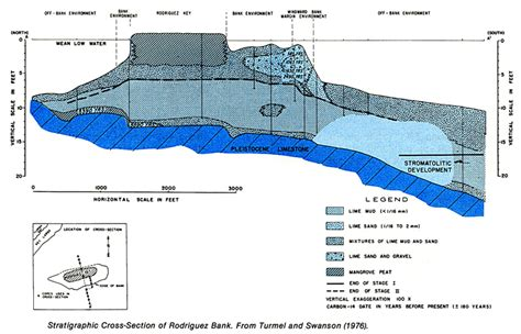 key section florida reefs and bays sepm strata