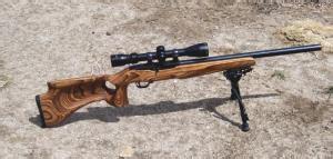 17 rem, 221 fb, or 22 k hornet guns, loads, optics and