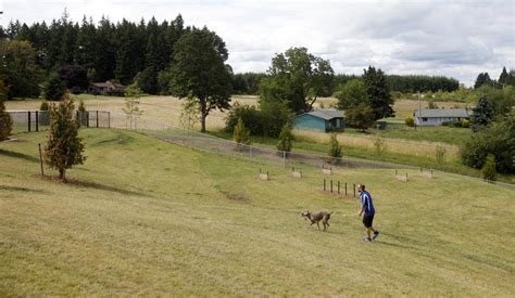 state with the most dog owners 100 which state has the most dog owners per capita 2016