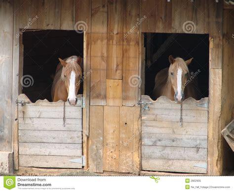 stall pferde pferde im stall stockbild bild haustier m 228 hnen
