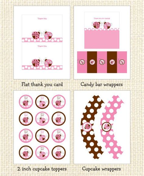 Pink Ladybug Baby Shower Decorations by Pink Ladybug Baby Shower Package Ladybug Baby