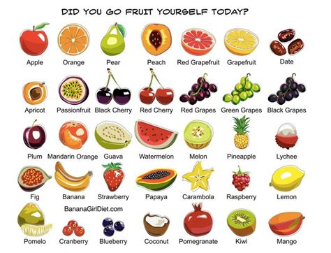 fruit 2 go did you go fruit yourself today go fruit yourself