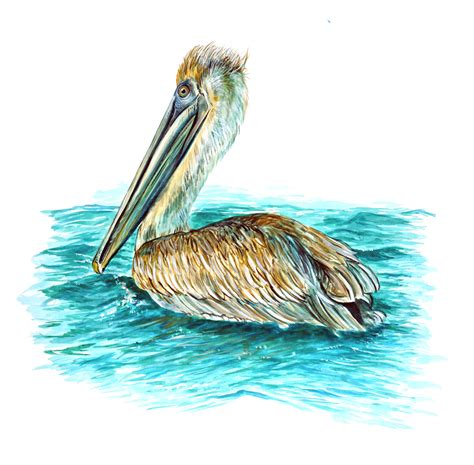 pelican bird auto vehicle boat rv window bumper vinyl - Pelican Boat Stickers