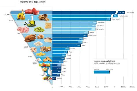 infezione alimentare a proposito di piramide alimentare ilnostrospazio