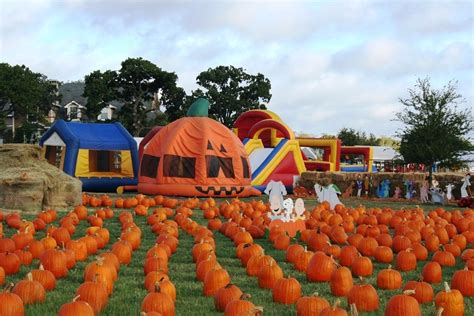 friendly pumpkin patch near me 10 pumpkin patches that are worth the trip