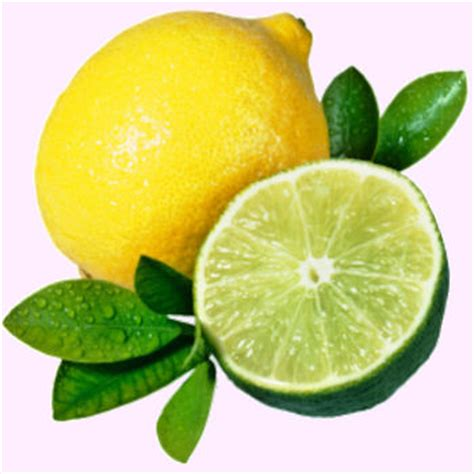 which is better lemon or lime fruits and vegetables want to be healthy