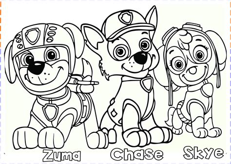 paw patrol blank coloring pages to print paw patrol coloring pages free printable coloring pages
