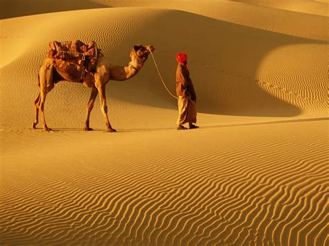 pics of experience rajasthan 8 events you cannot afford to miss