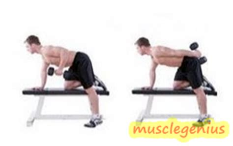 bench tricep extension muscle genius tricep workout at home with dumbbells