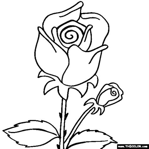 coloring page rose flower flower coloring pages