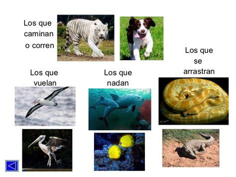 imagenes animales que se arrastran los animales