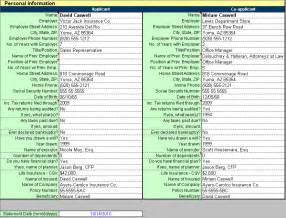 personal financial analysis template personal financial statement software