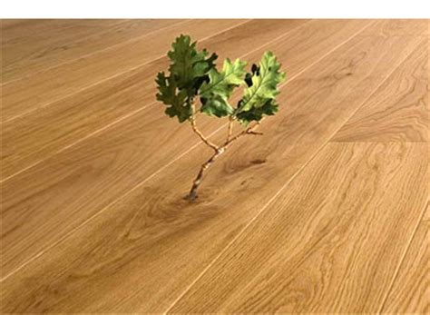 eco friendly wood environmentally friendly wood floor finishes from all in