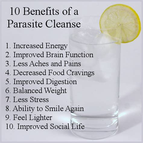 How To Do A Parasite Detox by 10 Benefits Of A Parasites Cleanse Livingfood101
