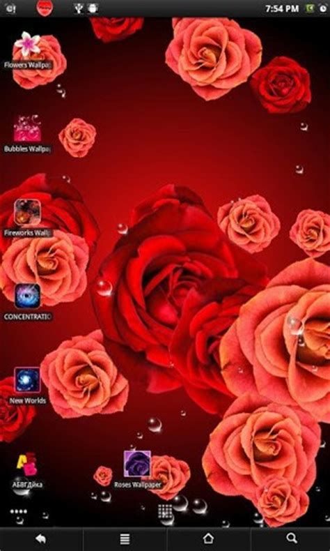 rose themes live roses live wallpaper app for android