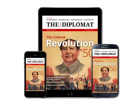 the diplomat s a novel the evolution of indonesia s the diplomat