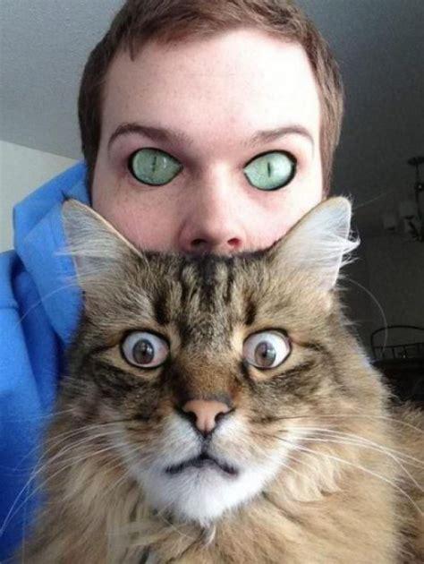 Photoshop Magic Or The Weirdest Photo by 可爱唯美猫猫图片大全 猫猫萌图 屈阿零可爱屋