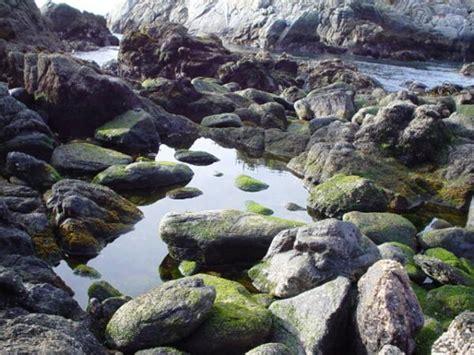 imagenes de minerales naturales rocas f 243 siles y minerales
