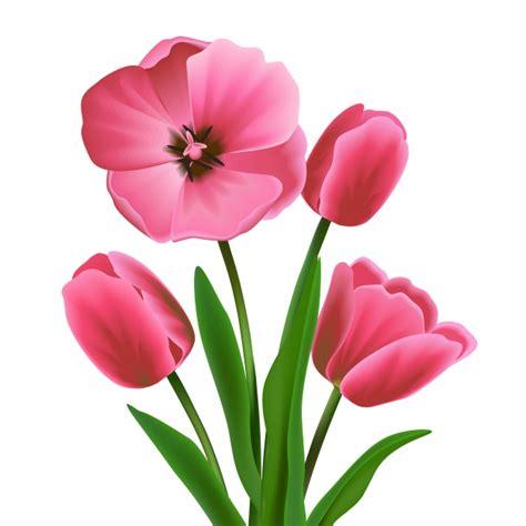 images of flowers coloured flower design vector premium