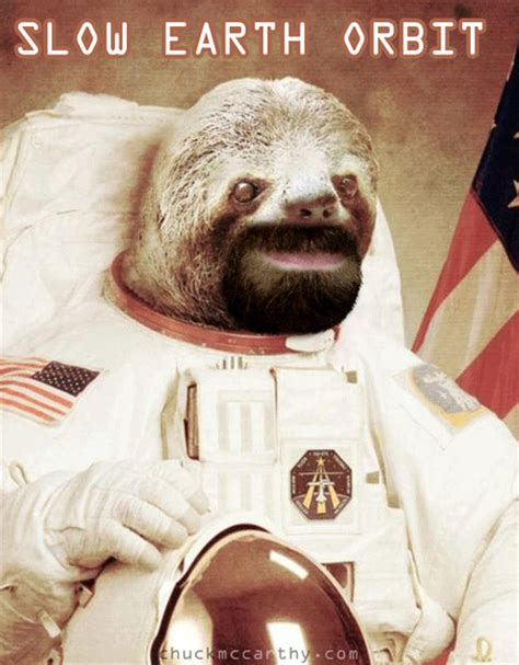 Astronaut Sloth Meme - sloth astronaut on tumblr