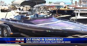 boat engine mechanic near me miracle cat survives one hour at the bottom of lake after