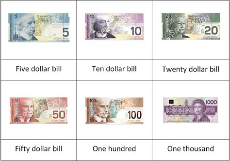 3 part card template printable pictures canadian money canadian currency