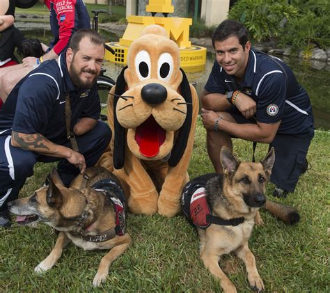 dogs at disney world service dogs from the invictus a day with mickey mouse pluto at walt