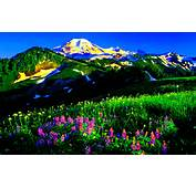 Dream Spring 2012  Mountain Wallpapers HD