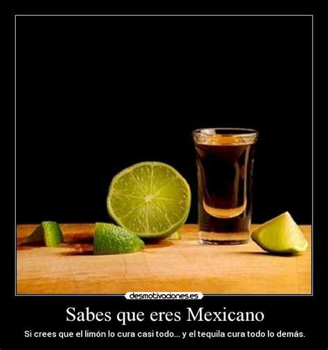 viernes de tequila desmotivaciones im 225 genes y carteles de mexicano pag 4 desmotivaciones