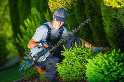 offerte lavoro giardiniere cerco giardiniere venezia doup pro