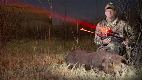 can coyotes see green light best predator lights reviews coyote