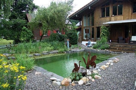 Natural Swimming Pools Luxury Pools Backyard Pond Pool
