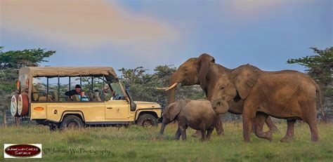 5 Safari Stuff To See by Kenya Safari Holidays East Africa Via Gamewatchers Safaris