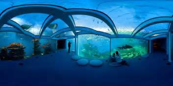Aquarium De Palma De Majorque   Michael Kolchesky